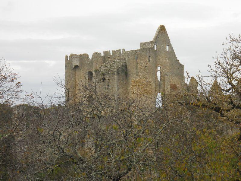 Angle-sur-l'Anglin Château