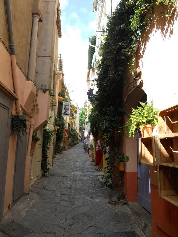 Vieille rue de Collioure