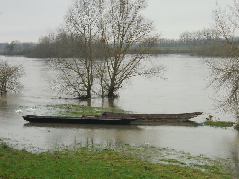 Crue janvier 2014-2